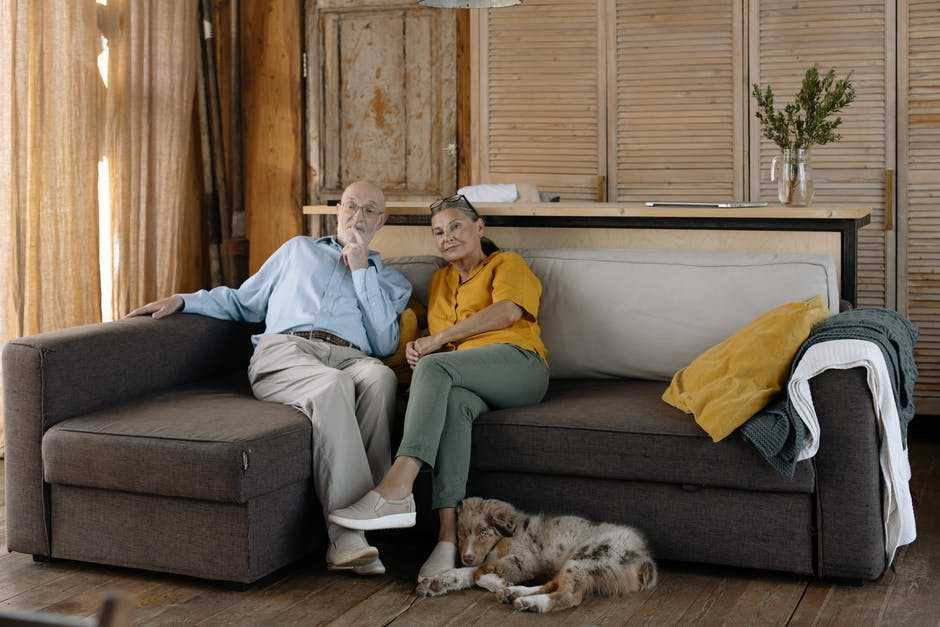 A person sitting in a living room with a dog